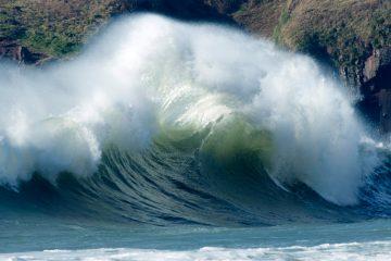 surf plume